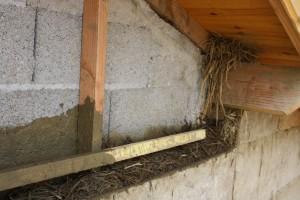 Isolation extérieure en terre-paille banché (sur murs parpaings)